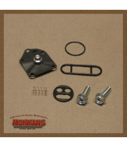 Kit reparación grifo de gasolina Zephyr 550/750/1100
