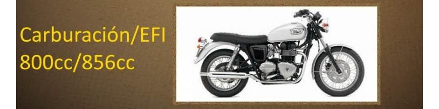 Triumph Bonneville 800cc/865cc
